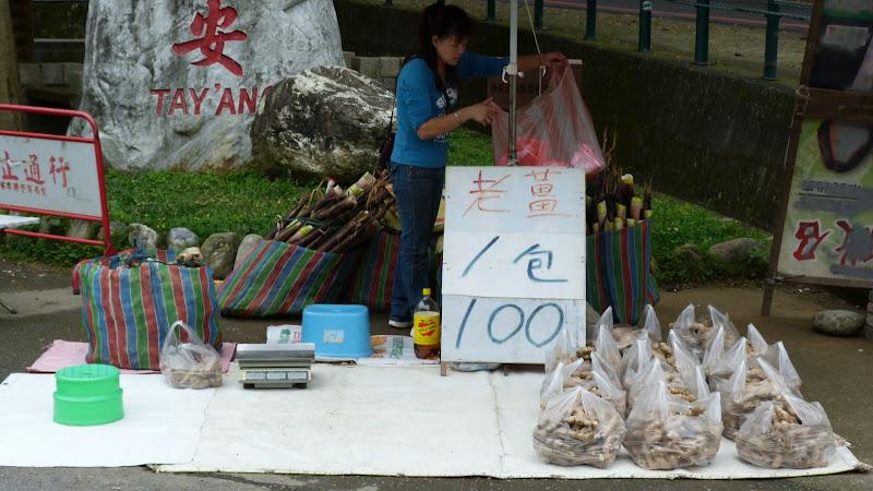 TAIWAN  Miaoli county,proche de Taufen - P1130202.JPG