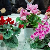 Tu Bishvat 2012  - 429150_2716370908090_2067785925_n.jpg