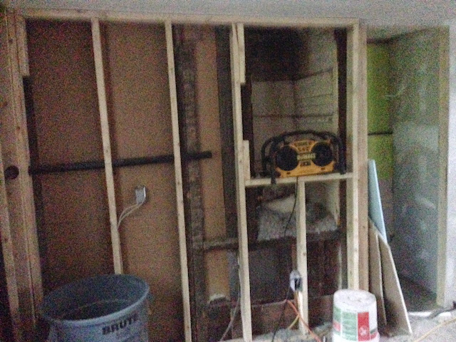 Renovation Project - IMG_0186.JPG