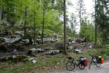 Kalksteinfelsen im Wald südlich von Lome