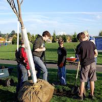 Tree Planting November 2010 - DSC_4529.JPG