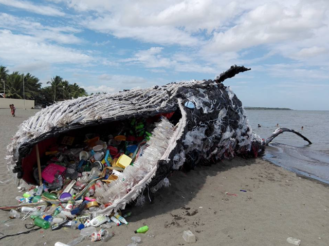 Greenpeace Philippines created and installed a giant whale art piece made out of plastic pollution at the Sea Side Beach Resort in Naic, Cavite. The 50-foot installation was on display until 14 May 2017. Photo: Vince Cinches
