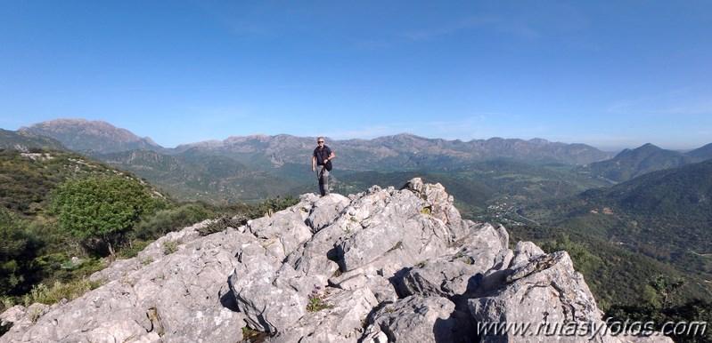 Cerros Albarracinejo-Peñuelas-Ponce-Albarracin y Alto del Puntal
