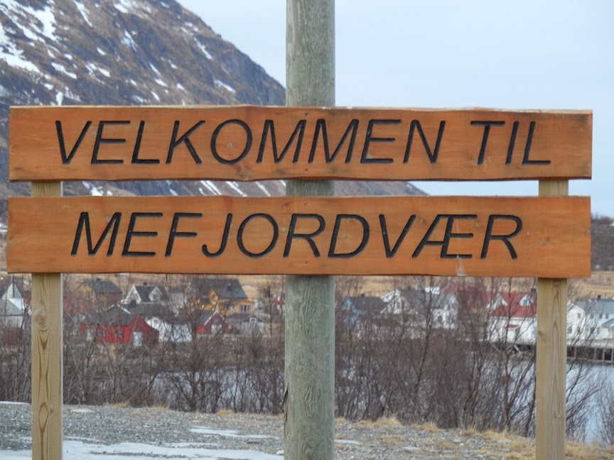 Norvège mars 2014 SAM_1239