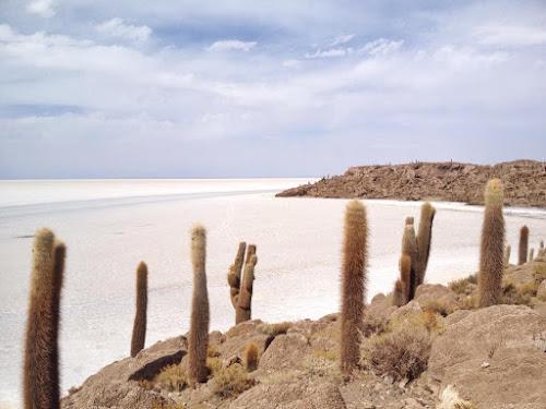 salar-do-uyuni-isla-pescado