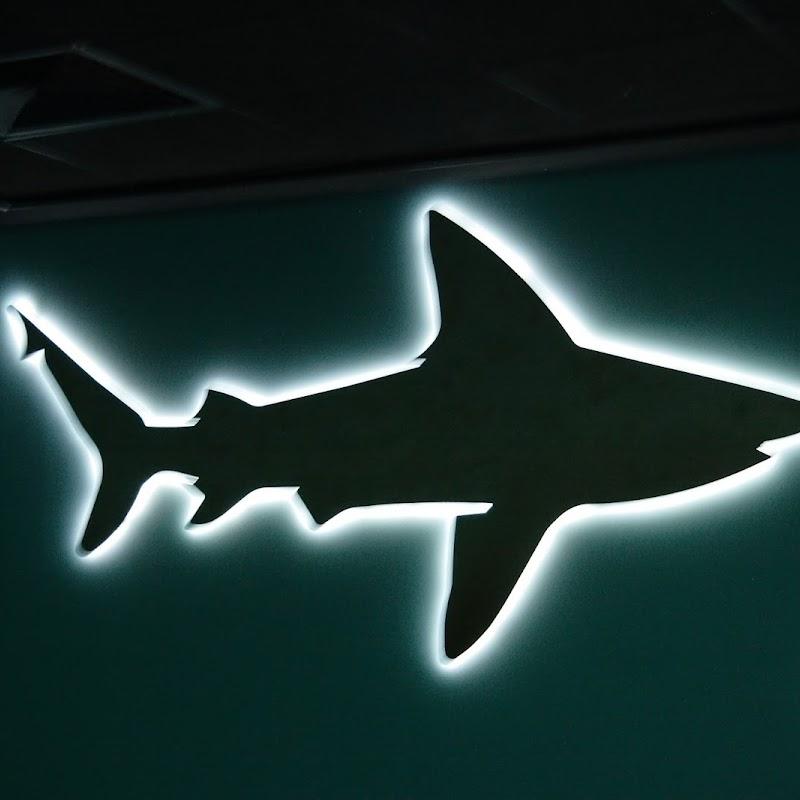 Aquarium_33.jpg