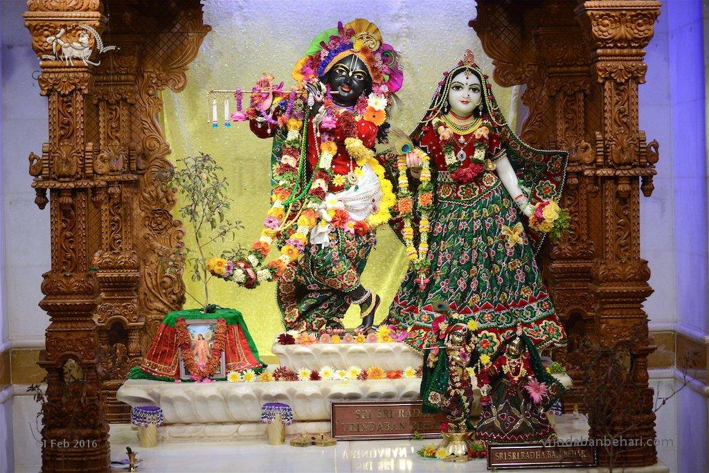 ISKCON GEV (Wada) Deity Darshan 01 Feb 2016  (11)