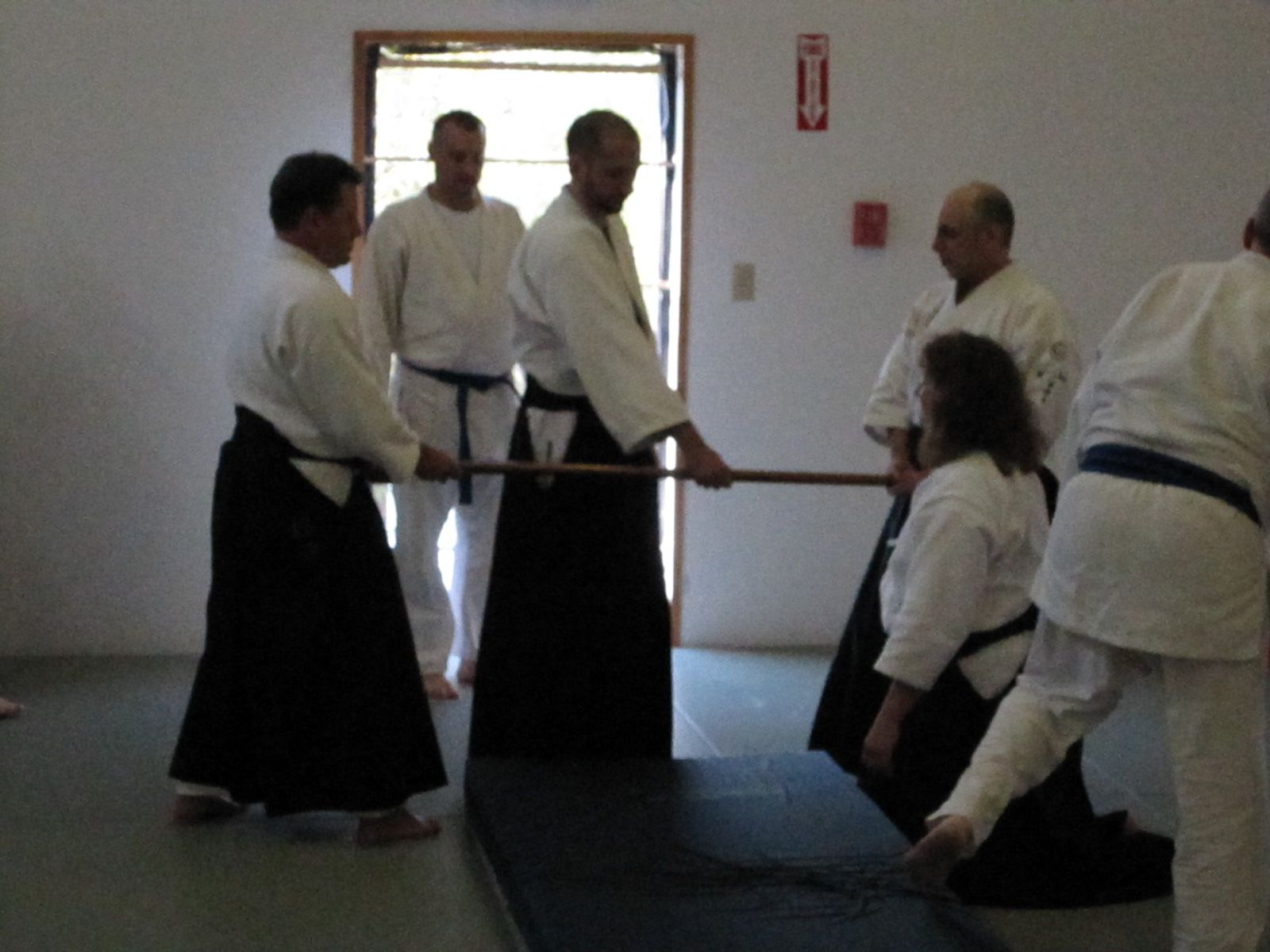 Sosei Aikido Kyokai Instructors Seminar