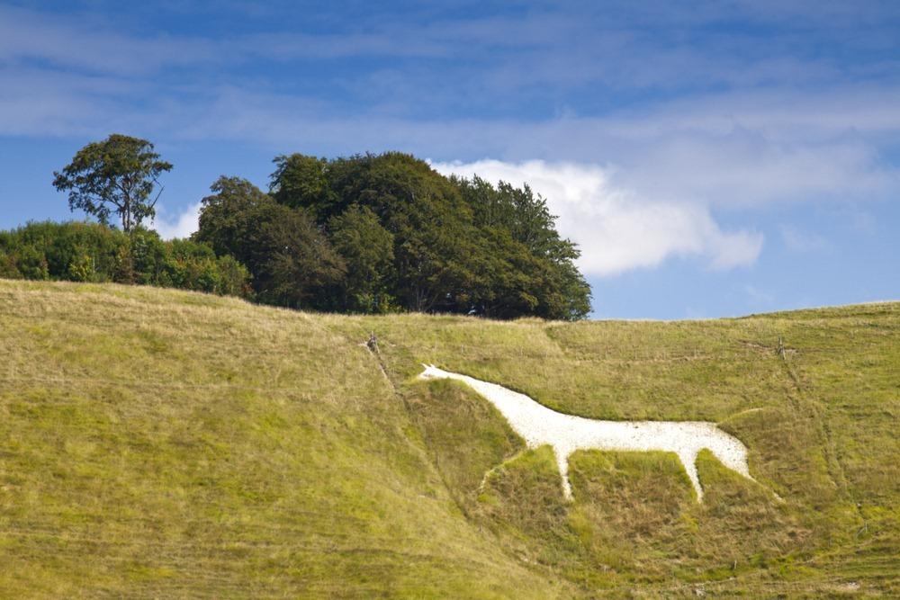 cherhill-white-horse