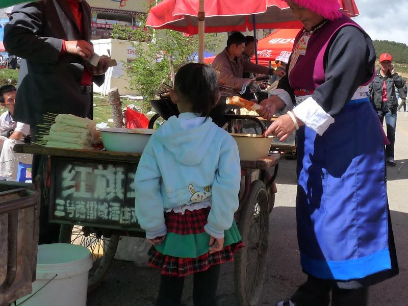 Chine.Yunnan Wen shan et BA MEI 1 - P1260744.JPG