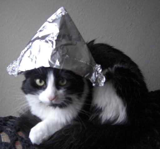 https://lh3.googleusercontent.com/-u8EmMSnM83A/TYK7CwmlY2I/AAAAAAAAAL0/nhrctYiikQ8/Sasha+cat+in+tinfoil+hat+cropped.jpg