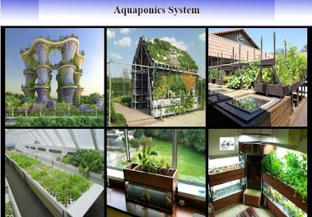 Aquaponics System - Android Apps on Google Play