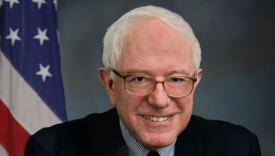 Leftist writer/activist endorses Bernie Sanders