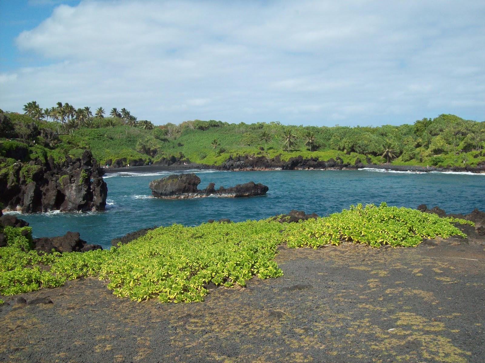 Hawaii Day 5 - 114_1520.JPG
