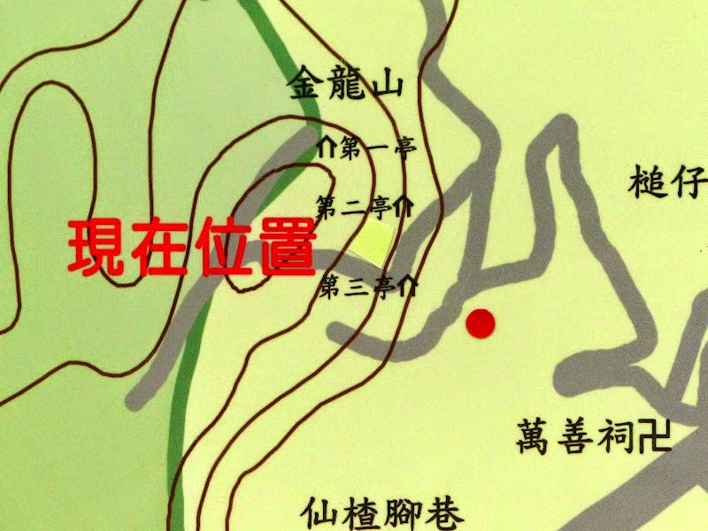 Puli, Nantou county, cueillette de thé - P1050679.JPG