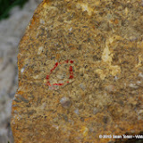 05-20-13 Arbuckle Field Trip HFS2013 - IMGP5117.JPG