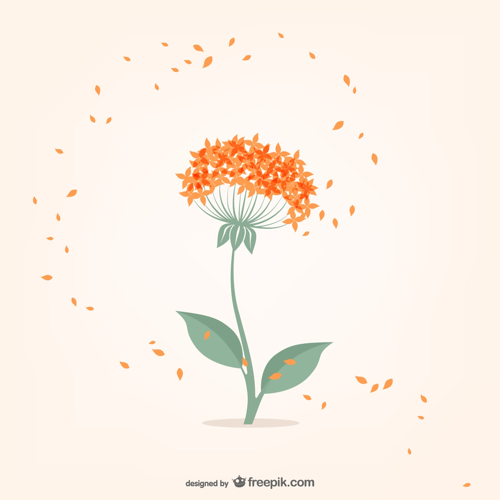 Minimal Flower With Orange Small Petals Free Download Vector CDR, AI, EPS and PNG Formats