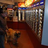 Jonge Hond centrum Emmen - 2012-04-01%2B021.JPG