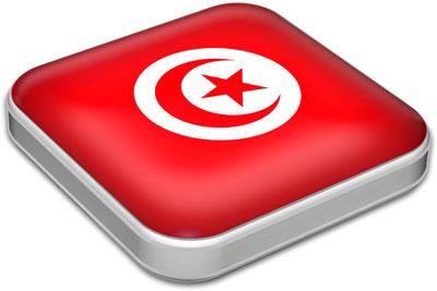 Flag of Tunisia with metallic square frame