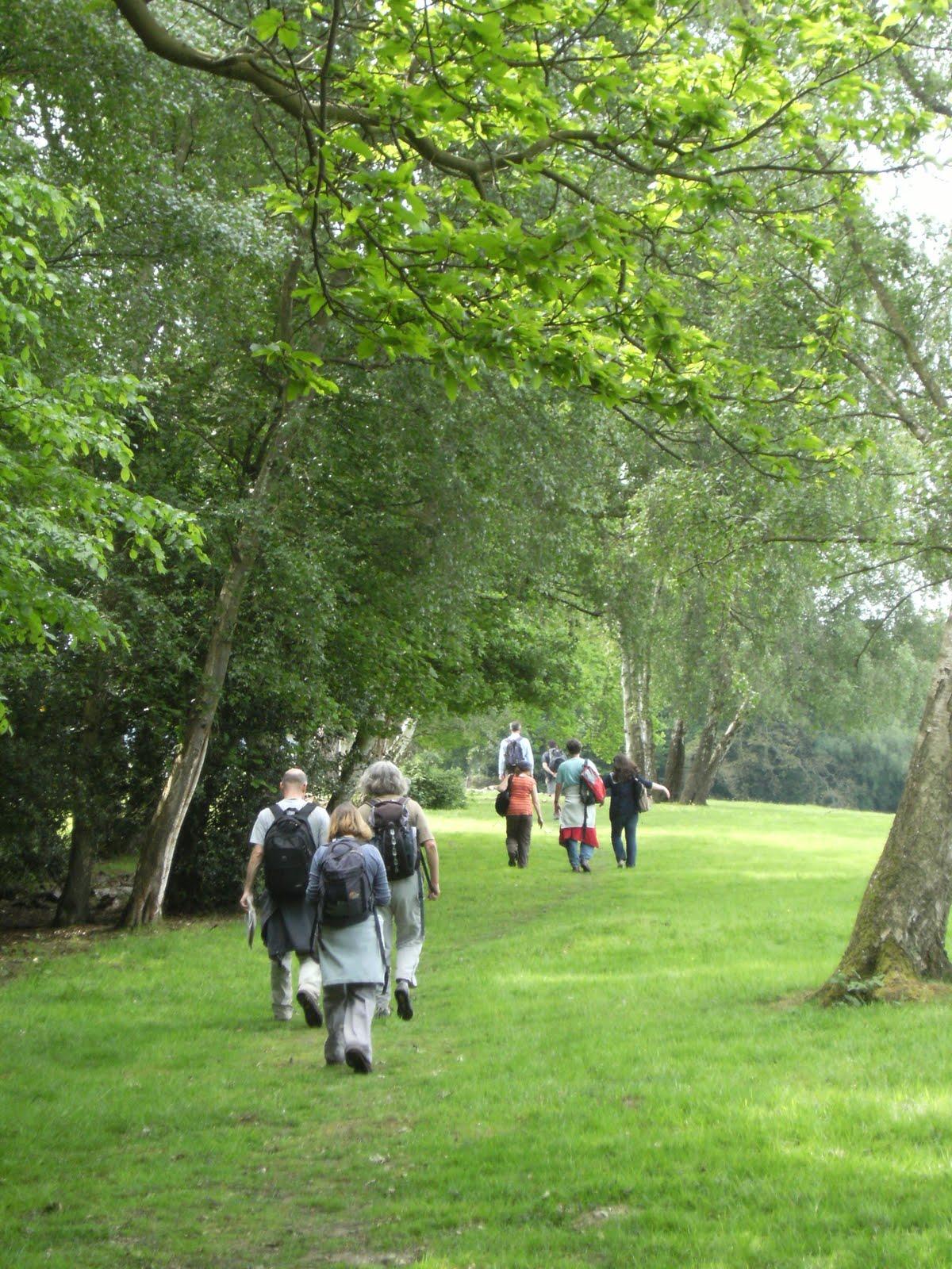 DSCF7803 Along the High Weald Landscape Trail
