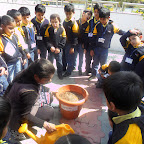 PLANTING SEEDS ACTIVITY 2012-13(SR.KG)
