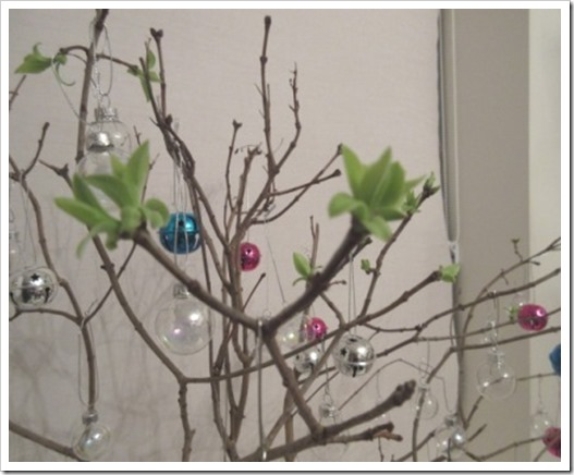 spring has sprung on my festive branches
