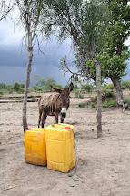 Dostupnost nezávadné pitné vody je v Etiopii jedna z nejhorších na světě. (Foto: Monika Ticháčková)