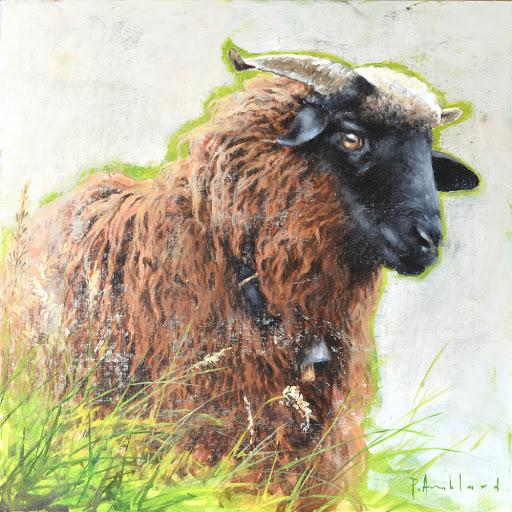 Mouton au Tricot. oil on canvas, 50x50cm