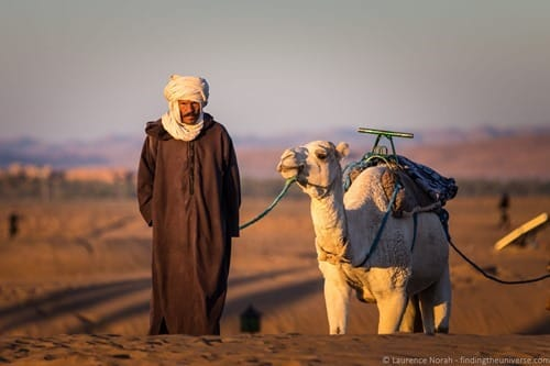Camel and man in desert Morocco