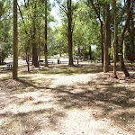 Mahognay Picnic Area in Blackbutt Reserve (401209)