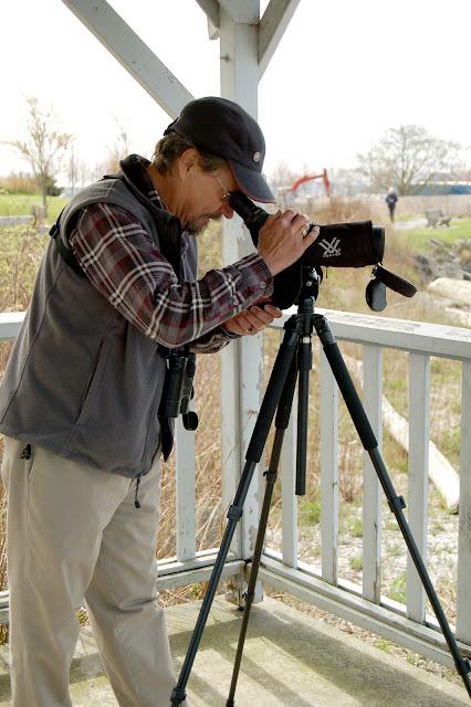 Bellingham is home to species of birds, offering great opportunities for bird watchers / Credit: Jane Gershovich