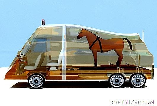 fleethorse2