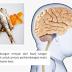 Otak Lebih Pandai Dengan Mengamalkan Fish Oil OmegaGuard !!