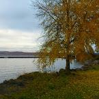 20121022-01-harbour-autumn.jpg