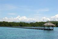 Talabong Mangrove Park Bais