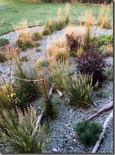 Dry river bed section of garden