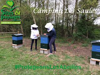camping-les-saules-cheverny-coeur-val-de-loire-tourisme-#protegonslesabeilles (4)