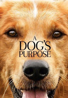 A Dog's Purpose - Mục Đích Sống Của Một Chú Chó