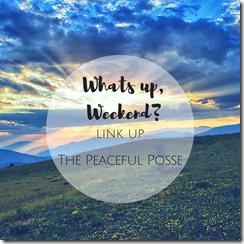 Peaceful-Posse-Friday