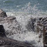 Surfside Beach Spring Break - IMGP6073.JPG