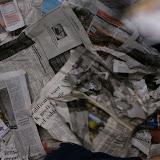 Bevers - Krantenopkomst - DSC_0073.jpg