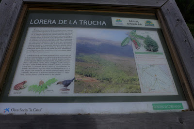 Sierra Palomera