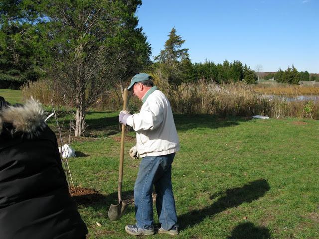 Hammo Planting - Shannon Schiesser - IMG_4935.JPG