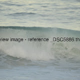 _DSC5886.thumb.jpg