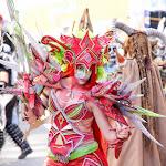 CarnavaldeNavalmoral2015_215.jpg