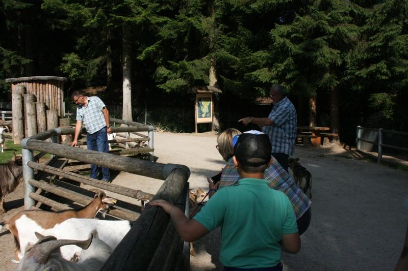 Ausflugsfahrt in den Bayerischen Wald: 19. Juli 2015 - IMG_1746.JPG