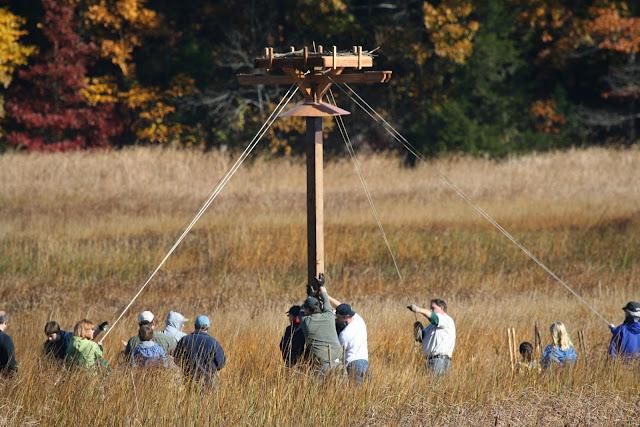 Guilford Salt Meadow Sanctuary Osprey Platform - 10-25-09%2B041.jpg