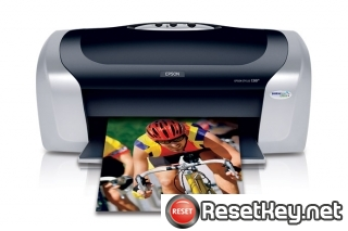 Reset Epson C88 printer Waste Ink Pads Counter
