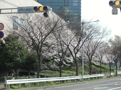 名古屋国際会議場北交差点.jpg