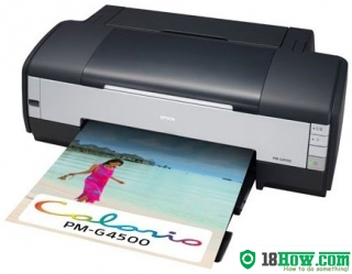 How to reset flashing lights for Epson PM-G4500 printer